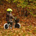 rower dla czterolatka