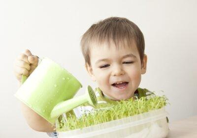 rozwój mowy u dziecka
